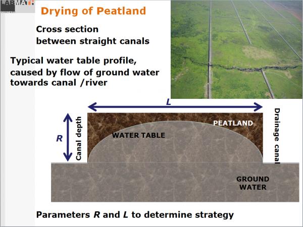 peatland3